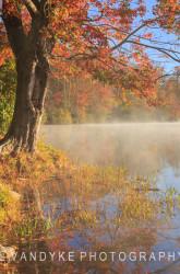 Fog lake North Carolina