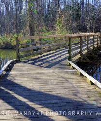 boardwalk, Lake Conestee Nature Park, Greenville, SC