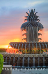Charleston SC Pineapple Fountain at Sunrise