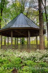 Virginia, Meadowlark Gardens, spring, gazebo