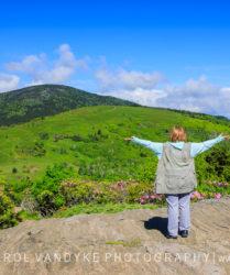 Jane's Bald Roan Mountain