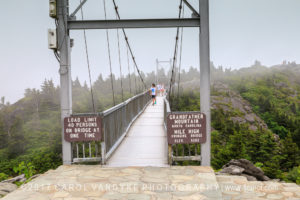 Swinging Bridge, Grandfather Mountain